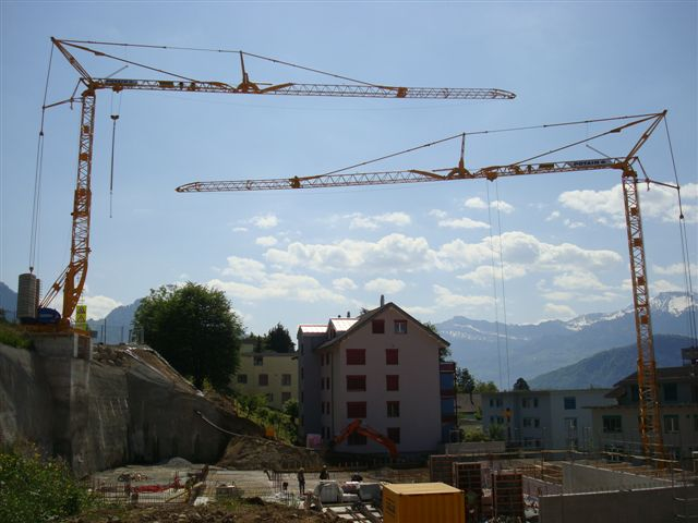 GMR : Grues a montage rapide - Page 5 Stirni10