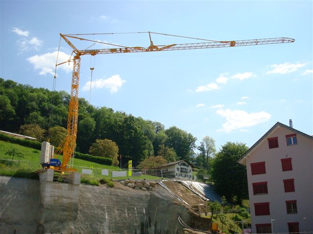 GMR : Grues a montage rapide - Page 5 Stirni11