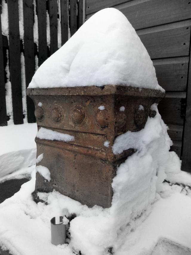 Winter Dscf5515