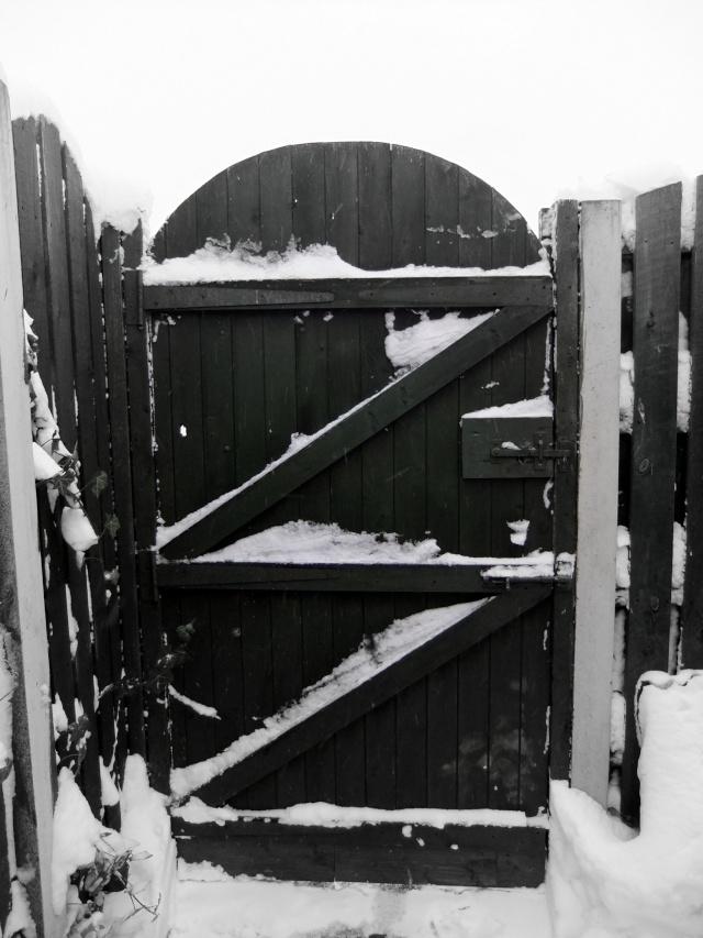 Winter Dscf5516