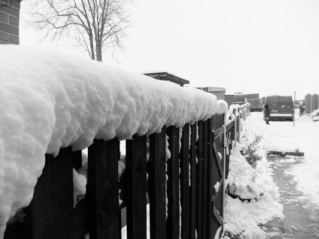 Winter Dscf5518