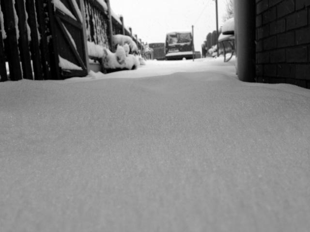 Winter Img_1622