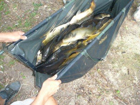 Concours individuel le 18 août sur le plan d'eau de chuzelles  P1120117