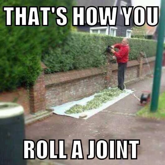 STILL LAUGHING Joint10