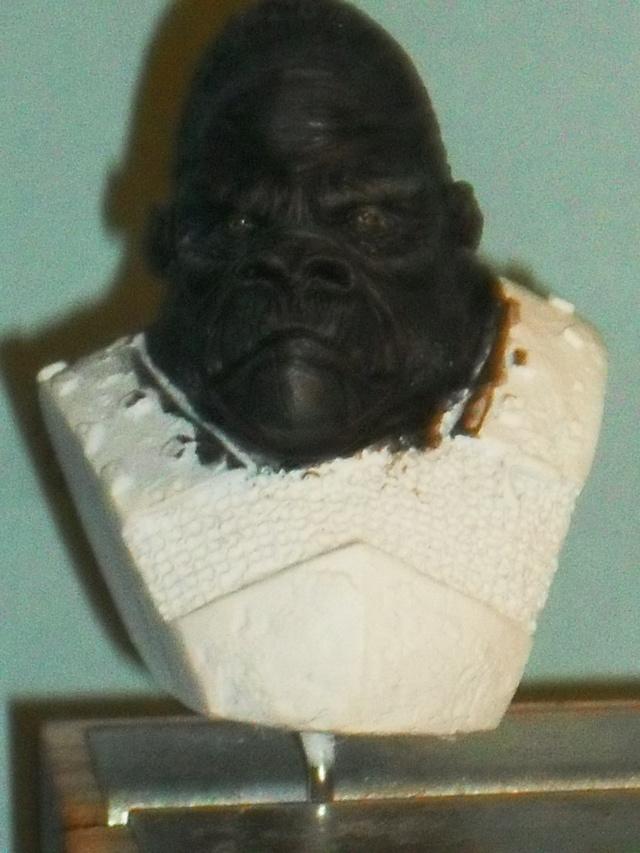 Gorille Warrior Gorill10