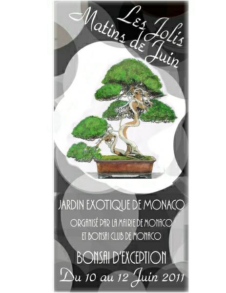 Les jolis matins de juin MONACO expo bonsai Jmj_2010