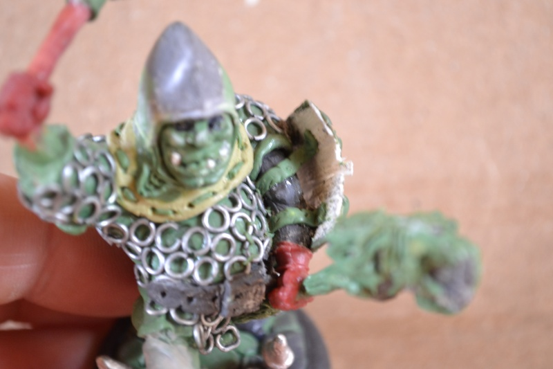 WIP New Ogre Hired Swords! Bretonnian Ogre and Evil Jester  - Page 2 Dsc_0326