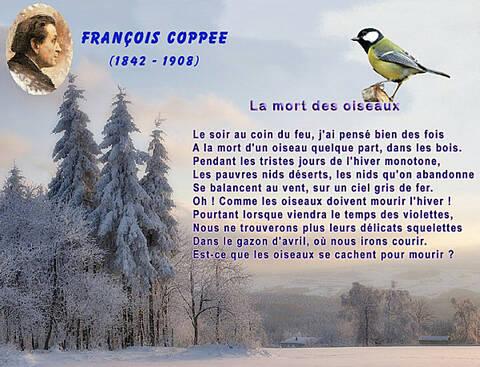 Poème La Mort Des Oiseaux De François Coppée De La Part De