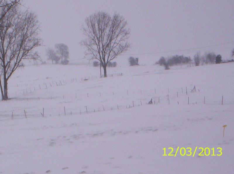 la neige est-elle arrivée chez vous ?  - Page 20 Photo_23