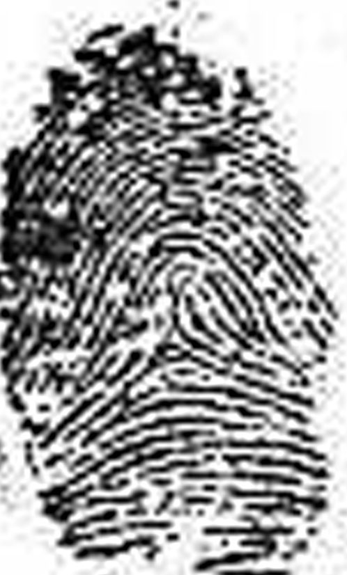 X - WALT DISNEY - One of his fingerprints shows an unusual characteristic! Walt-d12