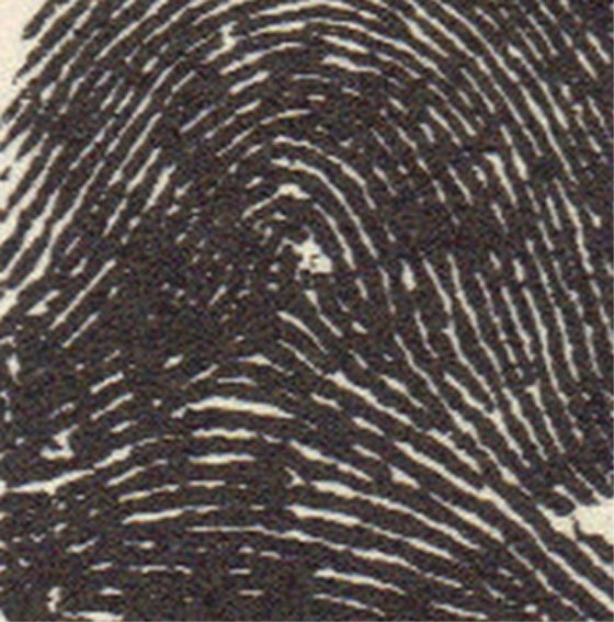 X - WALT DISNEY - One of his fingerprints shows an unusual characteristic! Walt-d18