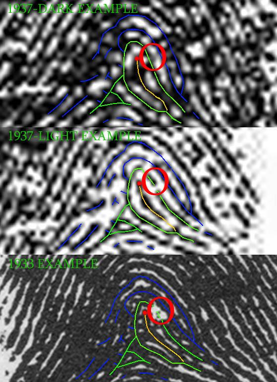 X - WALT DISNEY - One of his fingerprints shows an unusual characteristic! - Page 2 Walt-d30