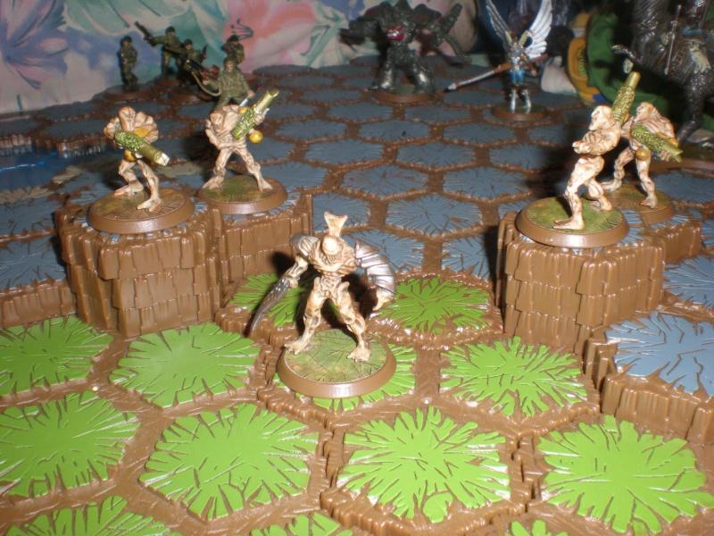 Jeu de figurines Heroscape P6300017