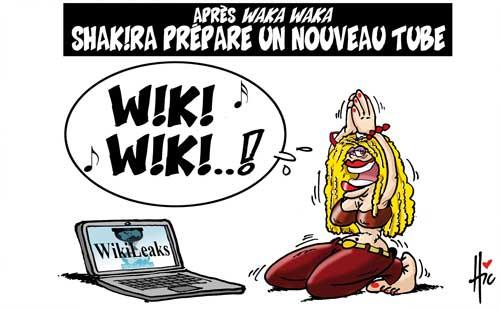Wikileaks,fuites et révélations - Page 11 20101210
