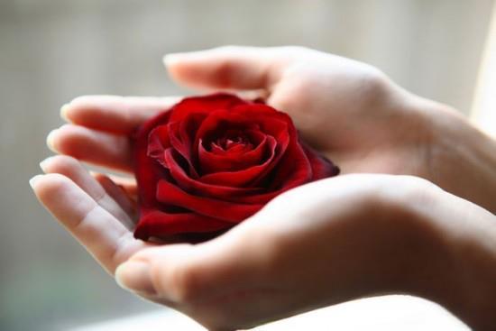 St Valentin de Michael ! 53555810