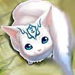 Liens d'un pitit renardeau polaire ♥ Minami13