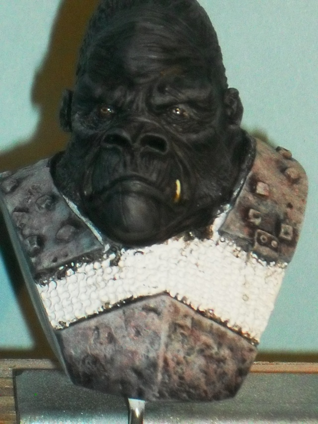Gorille Warrior Gorill16