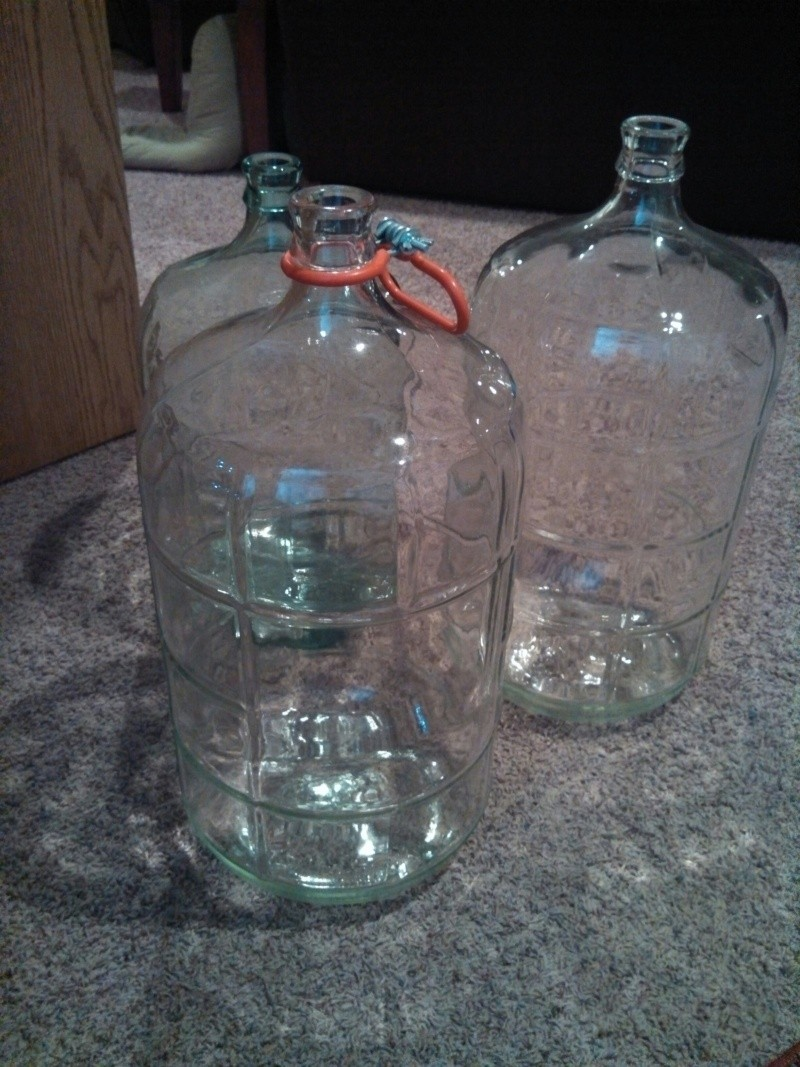 Carboys for sale!  Resize10