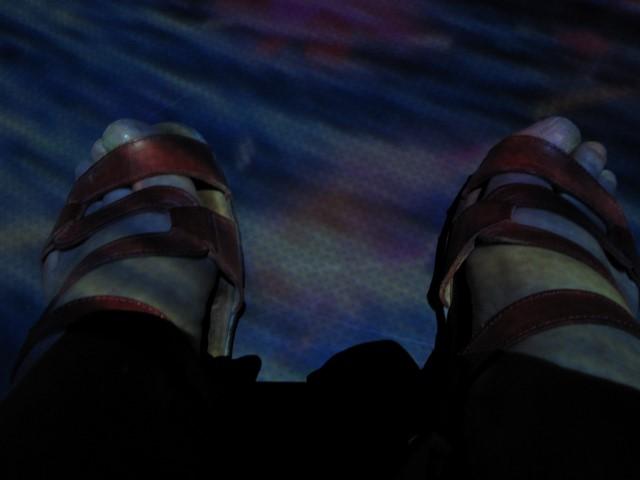 6 juillet : nos pieds Img_5511