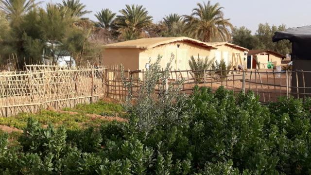 [Maroc Camp/Dernières nouvelles] camping rekkam à Boudnib 20190295