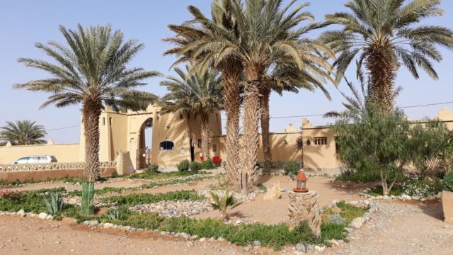 [Maroc Camp/Dernières nouvelles] camping rekkam à Boudnib 20190297