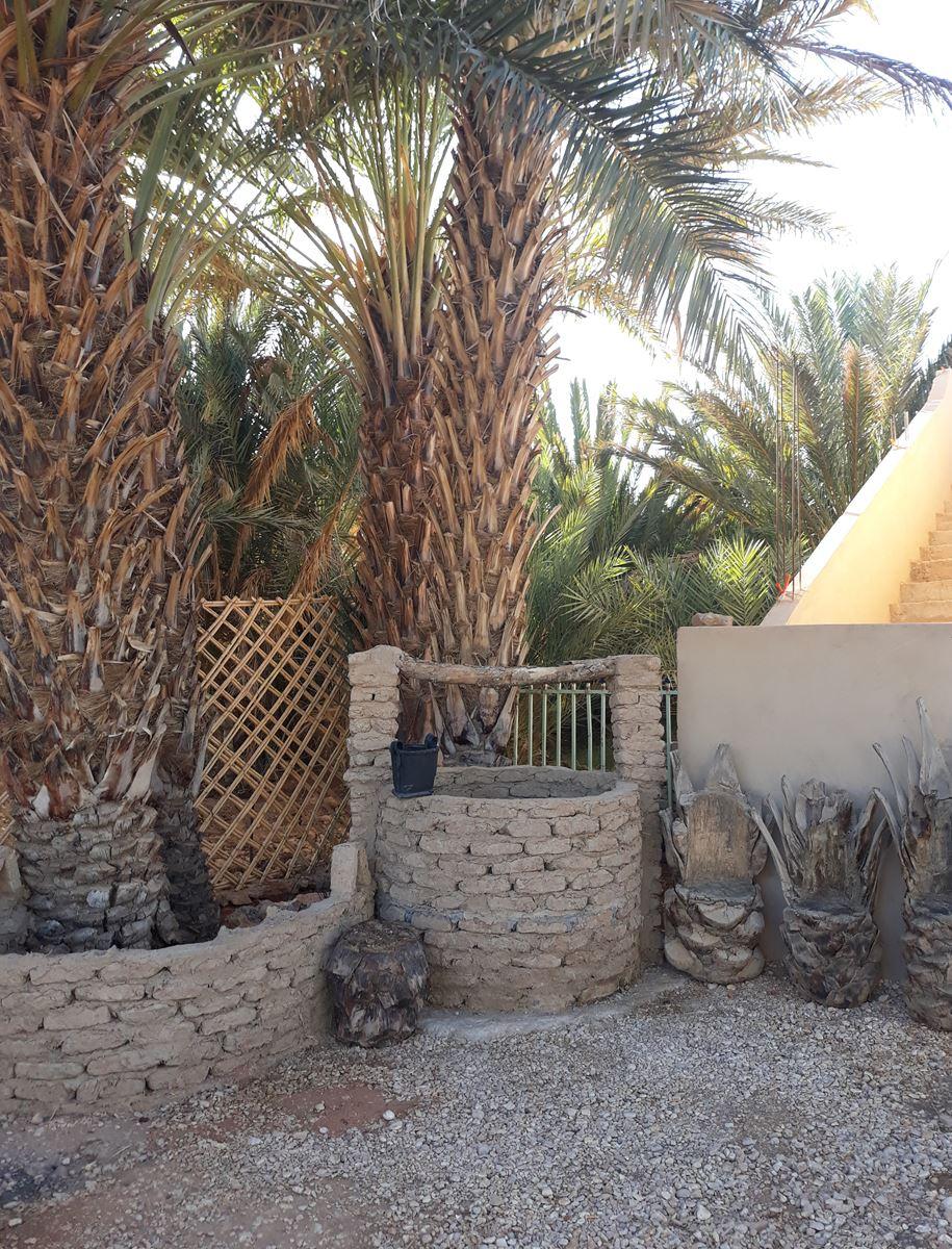 [Maroc Camp/Dernières nouvelles] camping Hakkou à Aoufous 20200183
