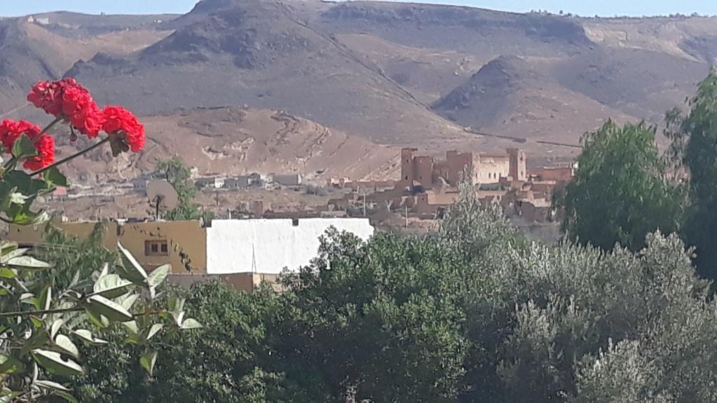 [Maroc Camp/Dernières nouvelles] La bonne Étoile à Taliouine 20200234