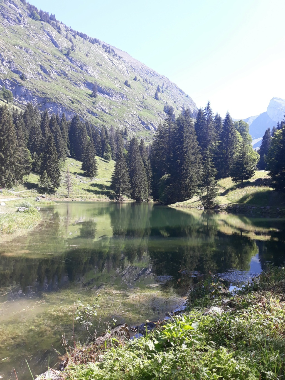 [Autres voyages/France] Séjour en Haute Savoie 20200716