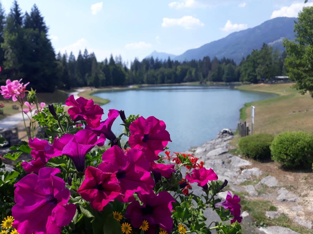 [Autres voyages/France] Séjour en Haute Savoie - Page 2 20200811