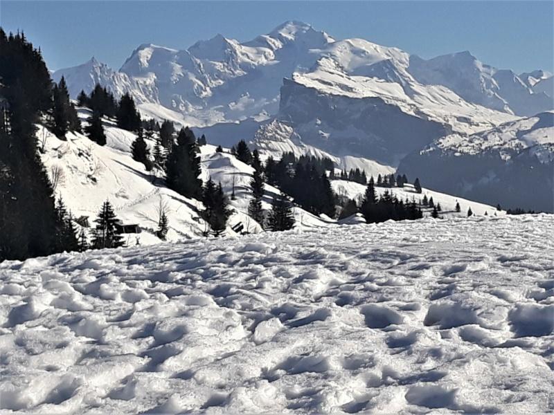 [Autres voyages/France] Haute Savoie - Page 2 20210240