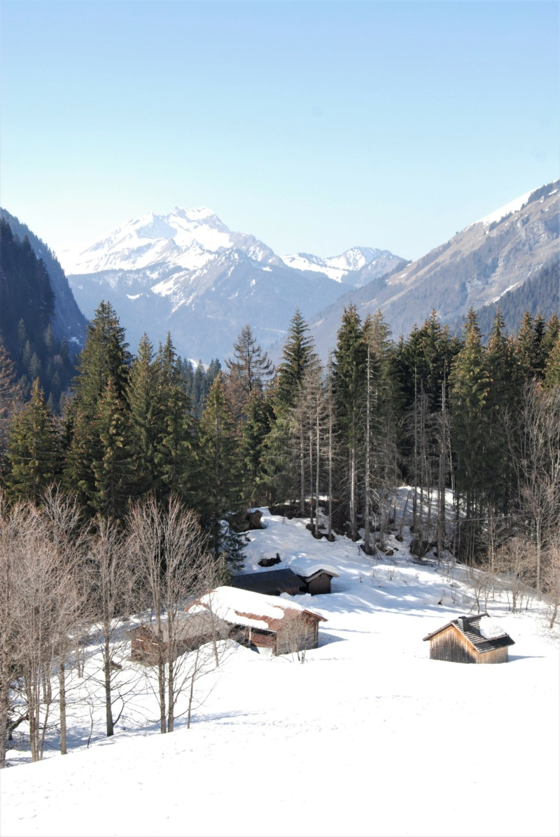 [Autres voyages/France] Haute Savoie - Page 2 Dsc_0318