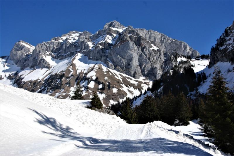 [Autres voyages/France] Haute Savoie - Page 3 Dsc_0328