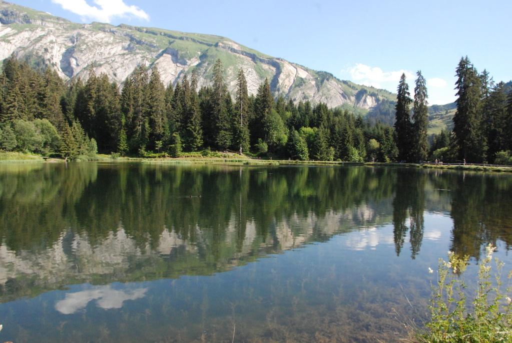 [Autres voyages/France] Séjour en Haute Savoie - Page 2 Dsc_8618