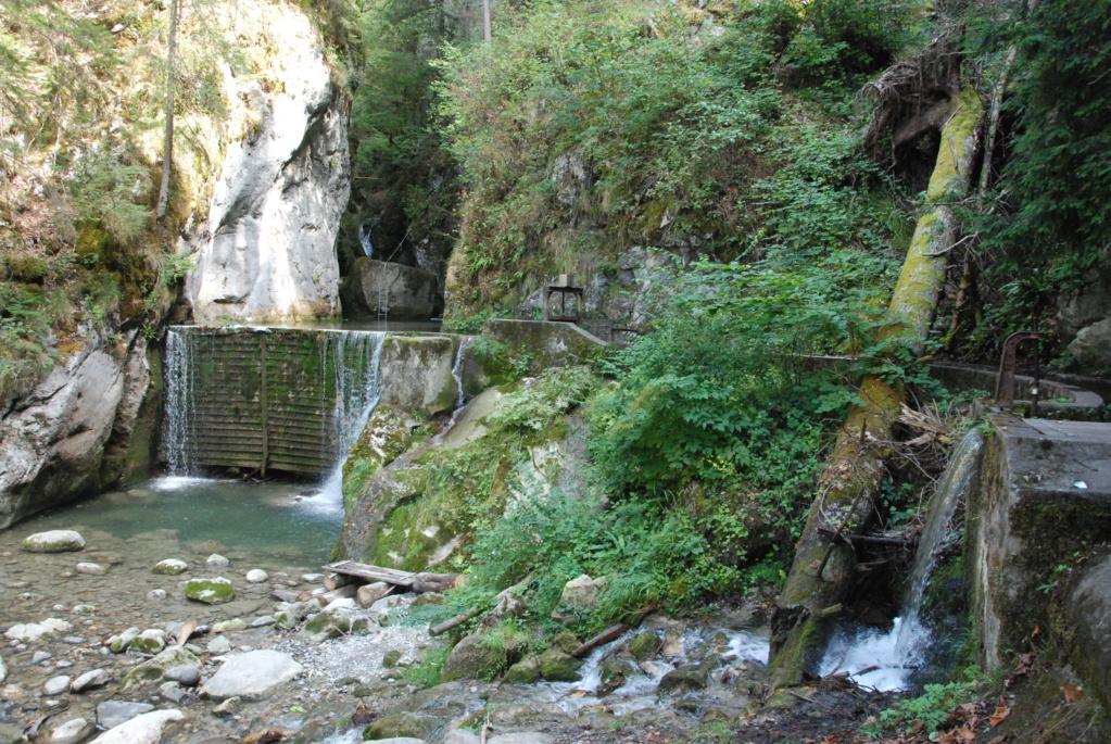 [Autres voyages/France] Séjour en Haute Savoie - Page 4 Dsc_8814