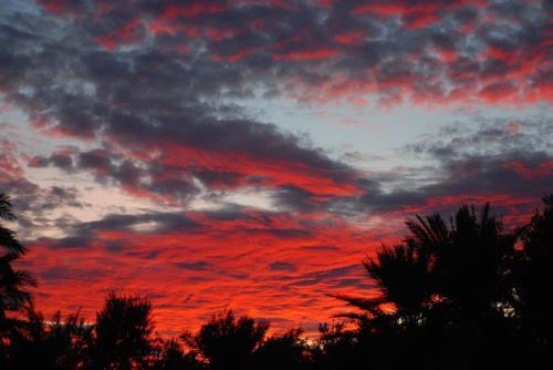 [nos beaux pays : la France, le Maroc et .....  le Monde] Couchers de soleil Fuig110