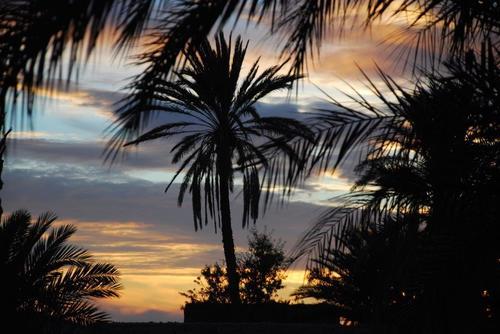 [nos beaux pays : la France, le Maroc et .....  le Monde] Couchers de soleil Fuig210