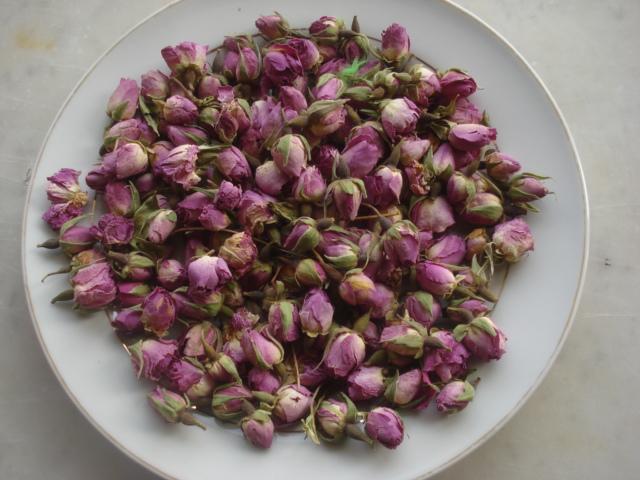 Les stapéliées marocaines Rose_d11