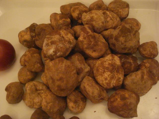 Les truffes du Sahara Truffe10