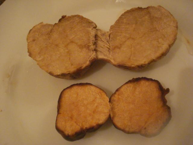 Les truffes du Sahara Truffe12