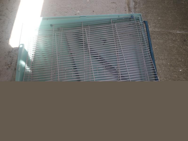 3 cages à vendre !! [69] P1090813