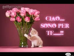 Buon compleanno Mary Ciao_s10