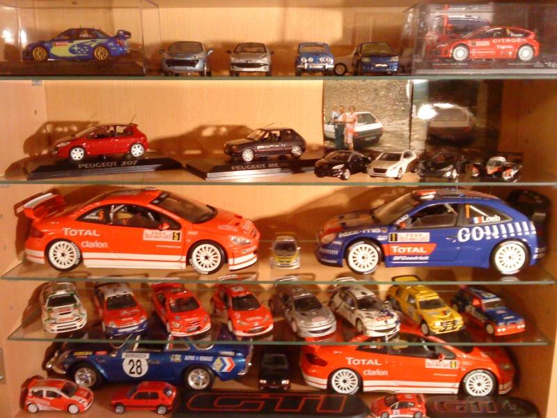 Mes titines miniatures Dsc01422