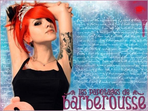 Les papotages de Barberousse