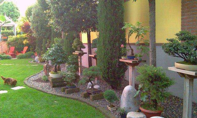 Dove coltiviamo i nostri bonsai - Pagina 2 1310