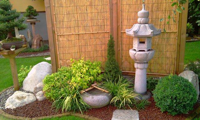 Dove coltiviamo i nostri bonsai - Pagina 2 1510