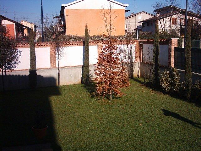 Dove coltiviamo i nostri bonsai - Pagina 2 211