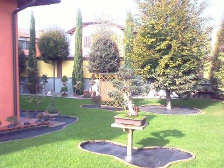 Dove coltiviamo i nostri bonsai - Pagina 2 410