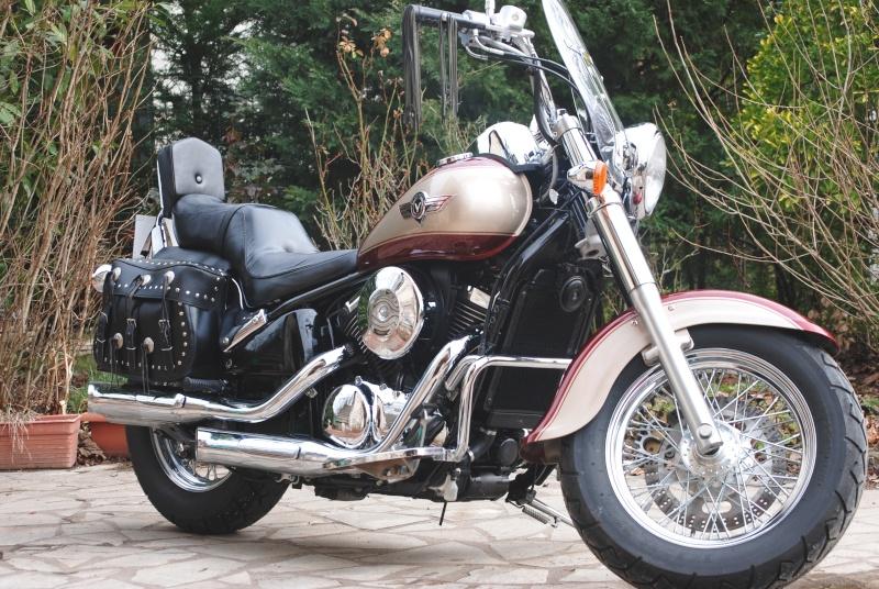 800 vn - Ma nouvelle moto Vn011010
