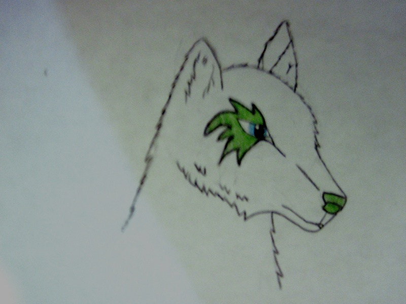 WhiteWolf´s Art Img_1112