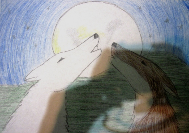 WhiteWolf´s Art Img_1117